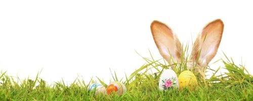 Feiern Sie Ostern mit uns!